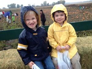 pumpkin farm 2014 preschool